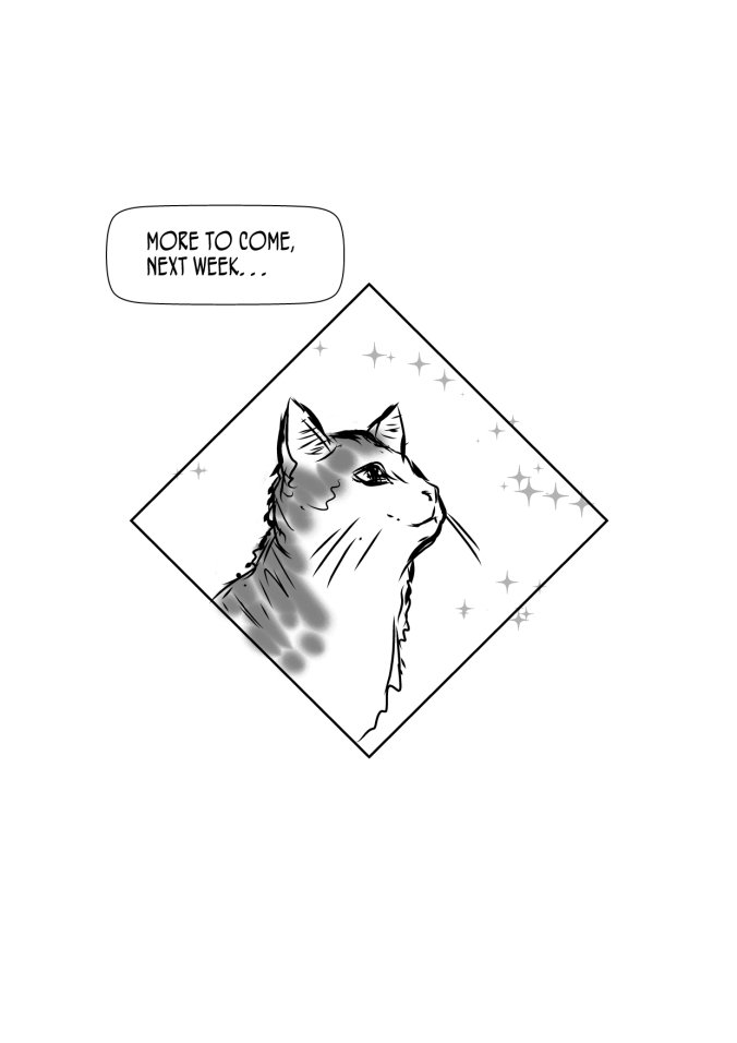 catdiamondpic
